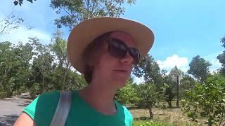 """Эко-парк """"Дольче вита"""". Вьетнам. Нячанг. Экскурсия от Пегас (Pegas Touristik)"""