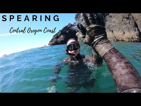 Spearing The Central Oregon Coast
