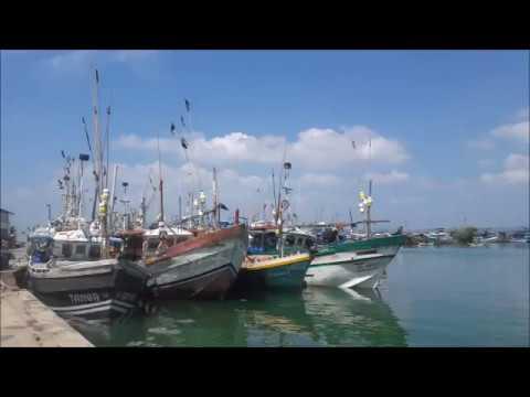 Sri Lanka Travel-Video