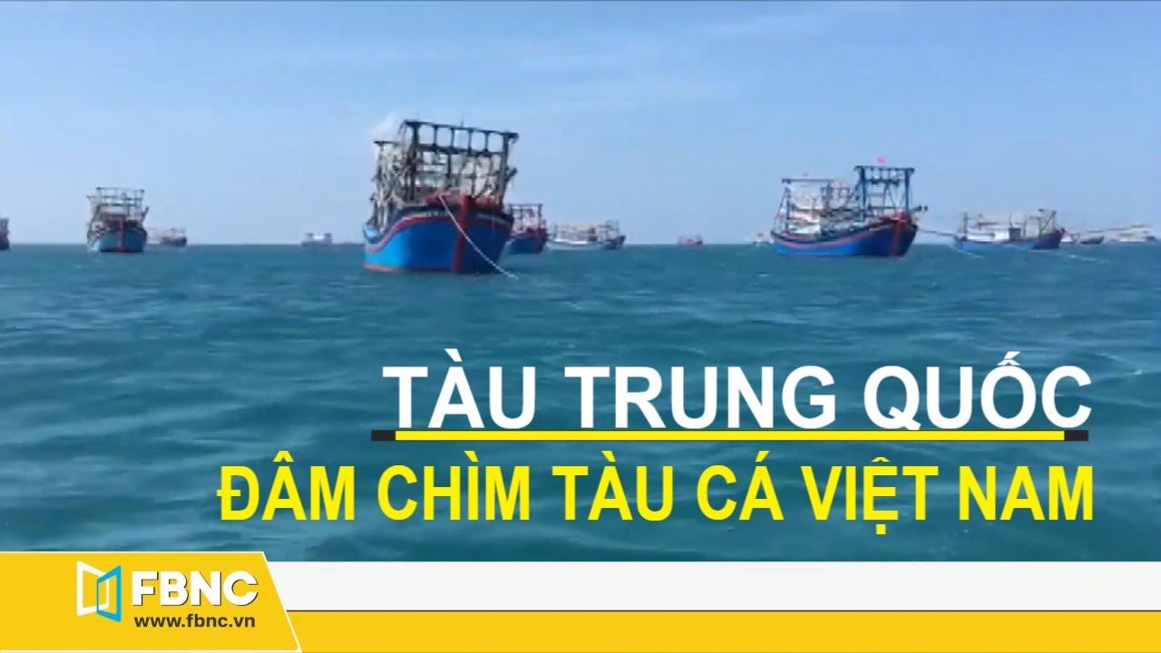 Tin biển đông mới nhất | Tàu chấp pháp Trung Quốc đâm chìm tàu cá Việt Nam | Fbnc