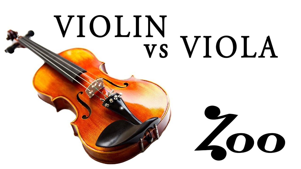 VIOLIN vs. VIOLA