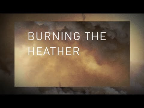 """Pet Shop Boys Announce New Album & Share New Song """"Burning The heather"""""""