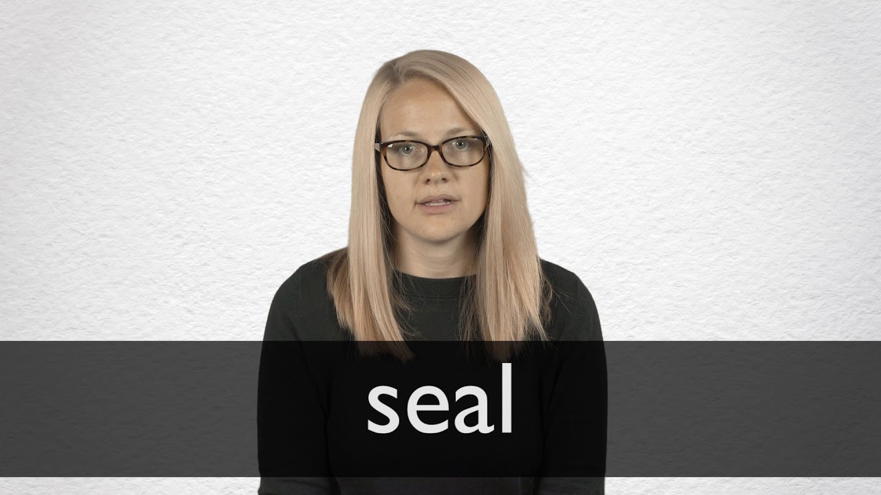 How to pronounce SEAL in British English