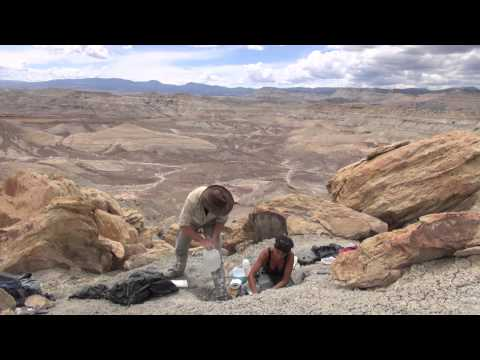 Paleontology 101: The Utah 2014 Expedition