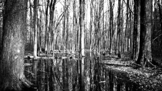"[ Charles Belfor ] - ""Cannot see the forest for the trees..."", Sinfonietta for Orchestra (2012)"