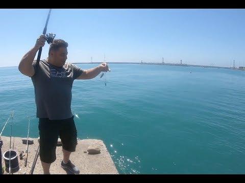 Сочи, Отель Звездный, Сочинский дендрарий, Пляжи Сочи, рыбалка на барабульку