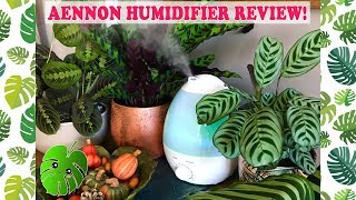 AENNON Cool Mist Humidifier Review!