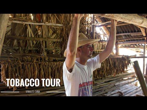 Vinales, Cuba - Touring a Tobacco Farm