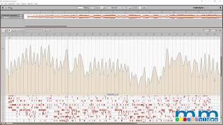 Melodyne 4 Tempo Detection | Candi Staton