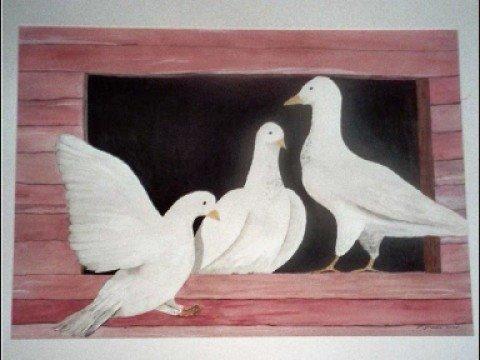 3 Weiße Tauben  Original Sound