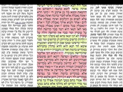 הדף היומי מסכת תמורה דף יא Daf hayomi Tmura daf 11