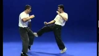 Tutorial Krav Maga Techniques