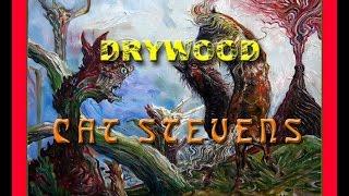 DRYWOOD Cat Stevens Peter Gullerud