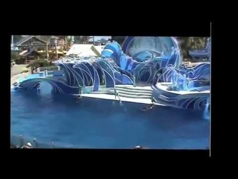 California Travel Destinations and Attractions | Visit SeaWorld San Diego Dolphin Show Part 1