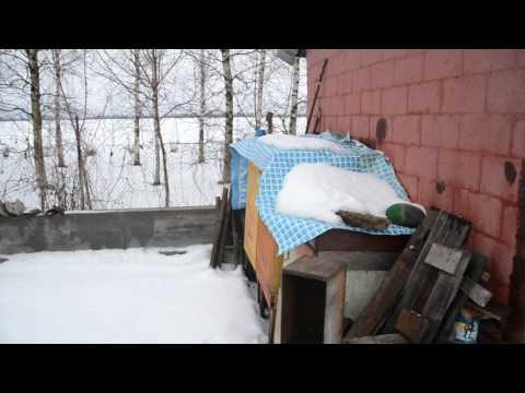 свинг знакомства Зимовники