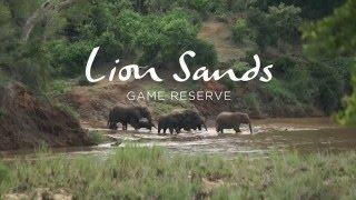 Lion Sands Narina Lodge -Kruger National Park