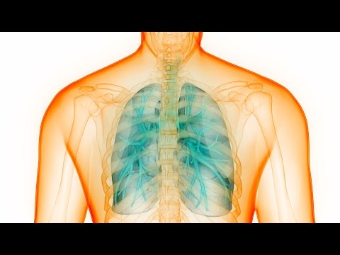 Alpha-1 Antitrypsin Deficiency – Not A Rare Disease, But Rarely Diagnosed