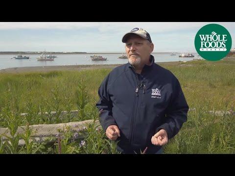 Alaska Seafood Program | Seafood | Whole Foods Market