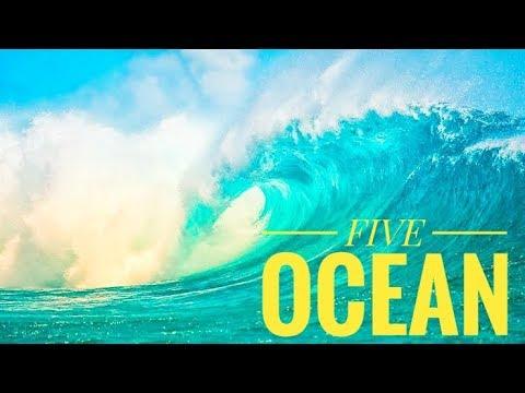 #ocean #largerstocean #sea 5 OCEAN   LARGEST  OCEAN  5 LARGEST OCEAN IN THE WORLD   ৫ মহাসমুদ্র।