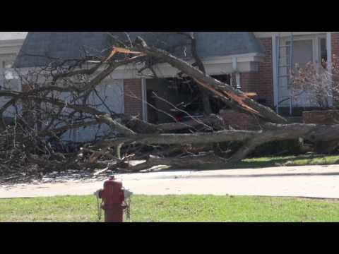 Wind Damage in Arlington Heights on Wednesday March 8, 2017