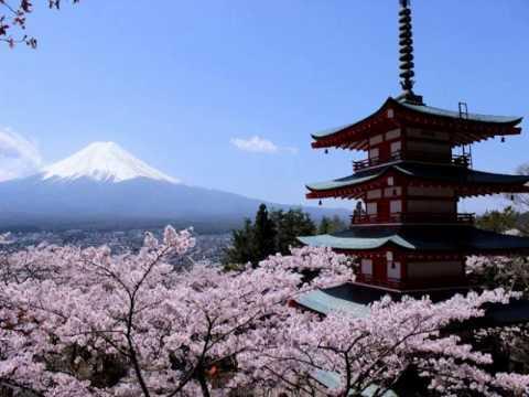 ดู ทัวร์ ญี่ปุ่น นี้ ทัวร์ ญี่ปุ่น ที่ไหนดี ทัวร์ ญี่ปุ่น เดือน มี นา 54 เที่ยว ญี่ปุ่น ครั้ง แรก ใน