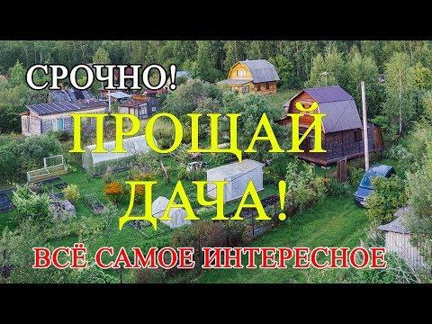 Почему россияне массово продают дачи