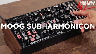 Moog Subharmonicon Semi-Modular Synthesizer Sounds (with DFAM)