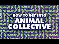 How To Get Into ANIMAL COLLECTIVE