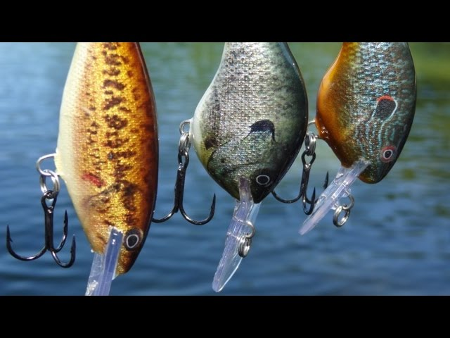 Rapala LIVE series of crankbaits