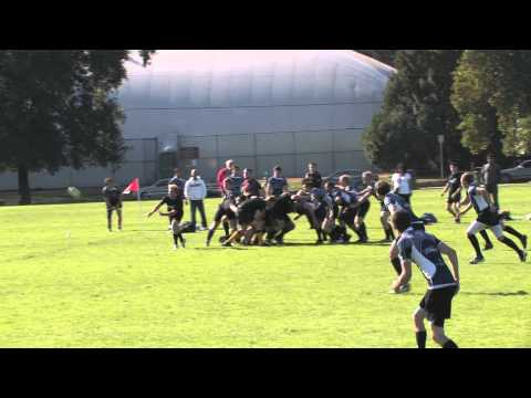 University of Calgary Law Rugby 2012