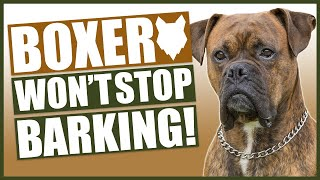 How To Stop Your BOXER Barking