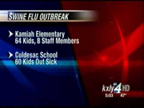 Kamiah, Culdesac schools shut down due to flu