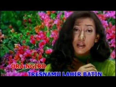 Safitri - Yen Aku Ngerti (Official Lyric Video)