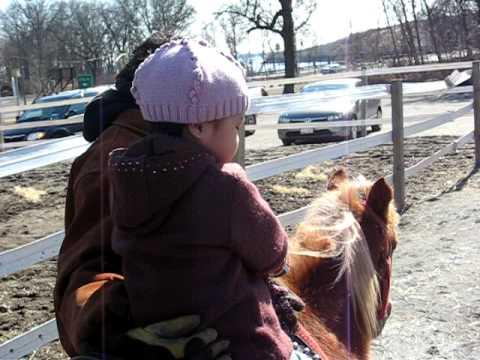 Download My little pony Madonna