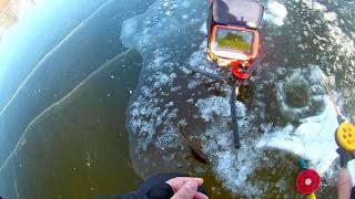 Ротан из подо льдаНе большой фрагмент вчерашней рыбалки.С камерой для рыбалки CALYPSO UVS 03