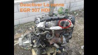 Déactiver la vanne EGR 307