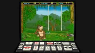 Большой выигрыш в игровой автомат Обезьянки. Лудовод игровые автоматы. Как выиграть?