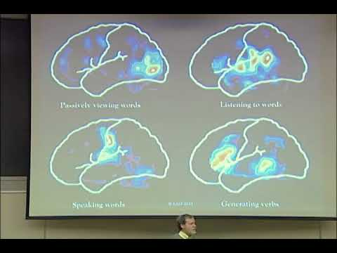 How Does Neuroscience Enhance our Teaching? – David Rose