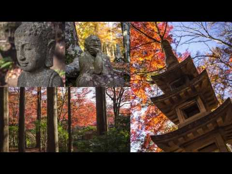 Japan 2016 slideshow
