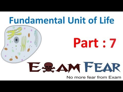 Biology Fundamental Unit of Life part 7 (Structure of cell- Nucleus) CBSE class 9 IX
