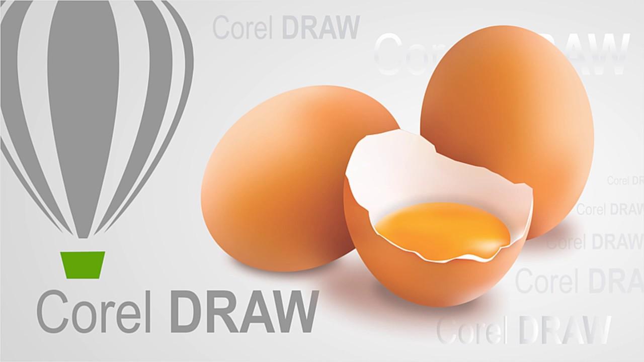 Vẽ trứng gà với công cụ Mesh Fill trong Corel Draw