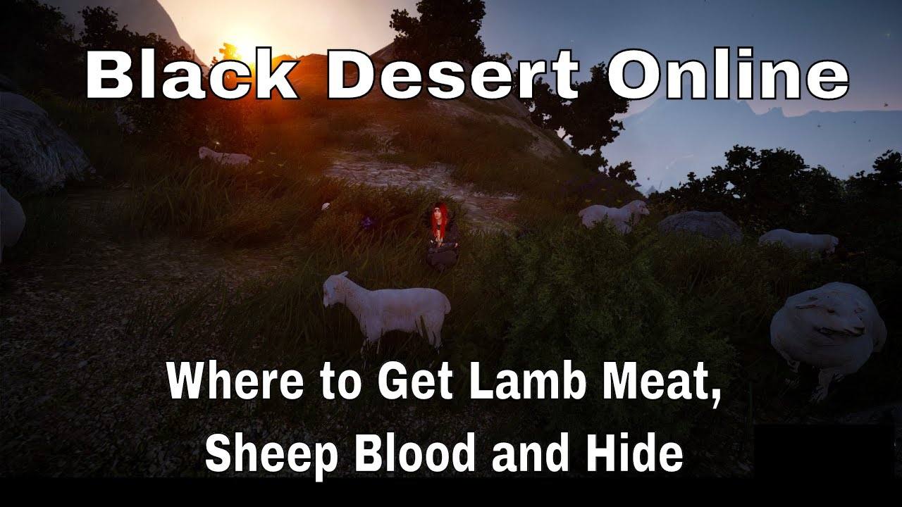 Black Desert Online: How to Make Good Feed   LevelSkip