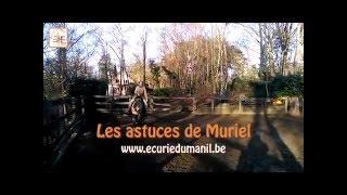 Les astuces de Muriel : Direction - Diagonale