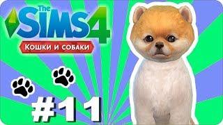 The Sims 4 100 Let's Play Cats & Dogs | Кошки и собаки # 11 - Сходили в рестик
