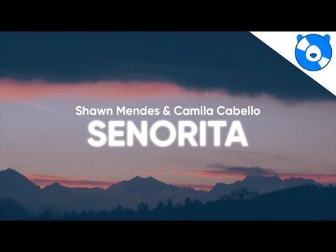 Shawn Mendes, Camila Cabello - Señorita (Clean - Lyrics)