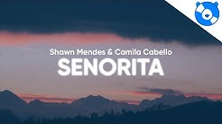 Shawn Mendes, Camila Cabello - Señorita (Clean - Lyrics)