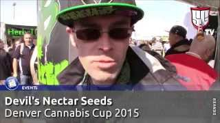 The Devils Harvest & Devils Nectar Seeds at the Denver Cannabis Cup - Smokers Guide TV Colorado