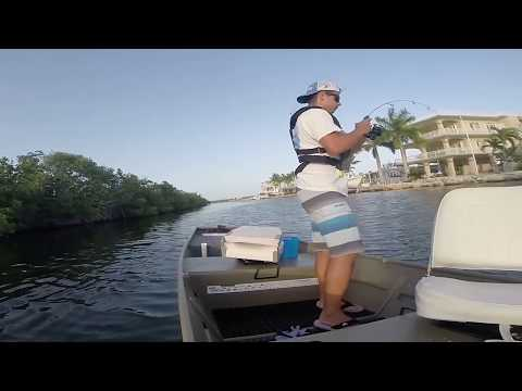 Jon Boat Adventures | Solo Fishing In The Mangroves