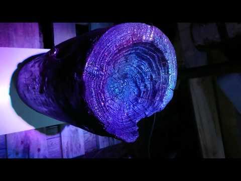 Super cool Diy wood stump psyke party light