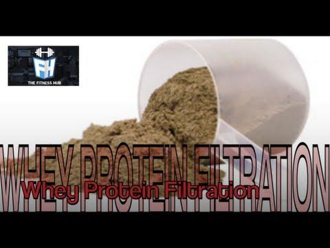 Whey Protein Filtration | TheFitnessHub